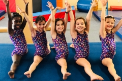 gymnastics pre team level 2 scrolling