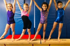 gymnastics scroll pic 1
