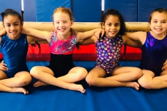 gymnastics scroll pic 3